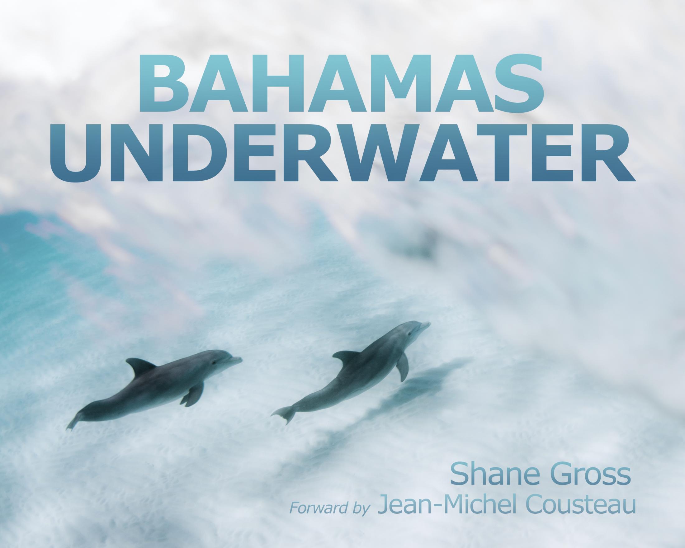 Art and Documentary Photography - Loading Bahamas_Underwater_Book.jpg